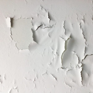 why is paint peeling on my basement walls