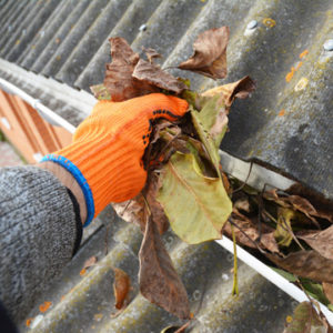 keep gutters clean