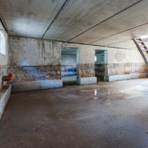 summer is good time for basement  waterproofing