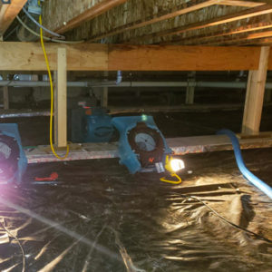 moisture in my crawl space