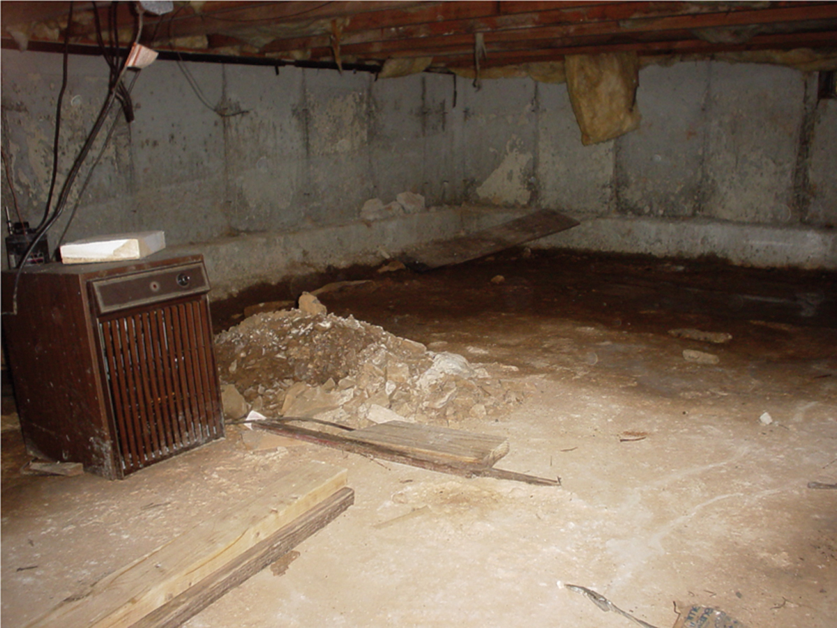 Mold and Mildew Removal Nashville, Mt. Juliet, Franklin, Knoxville, Murfreesboro, and Jackson