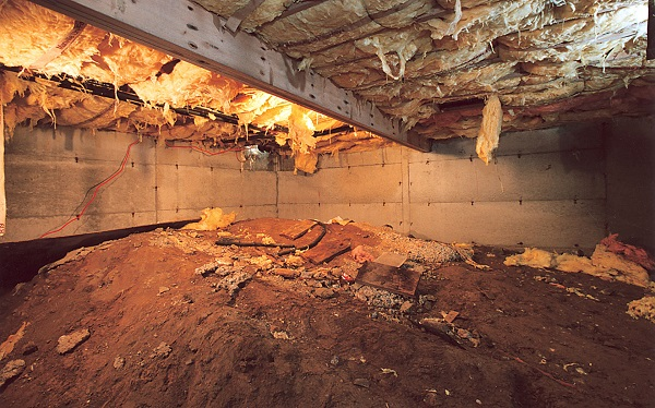 Dirty Crawl Space in Tennessee before Clean Space Crawl Space Encapsulation